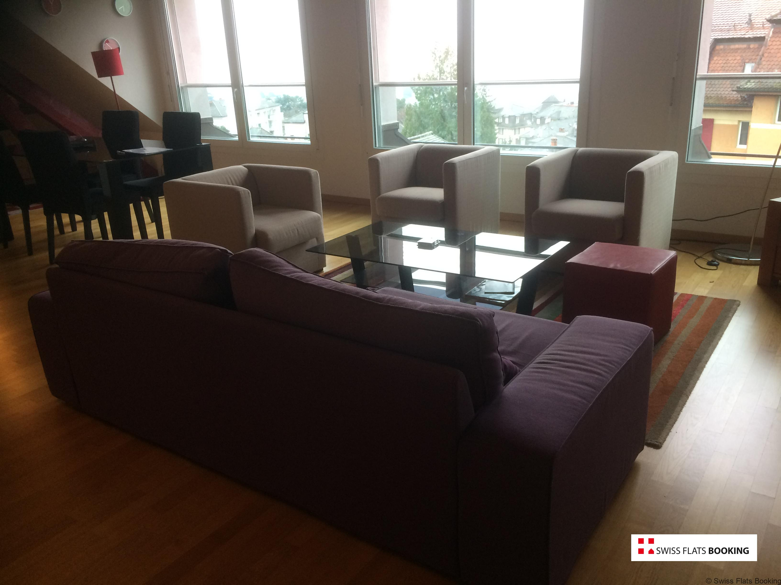 Spacious apartment/loft fully furnished Lausanne