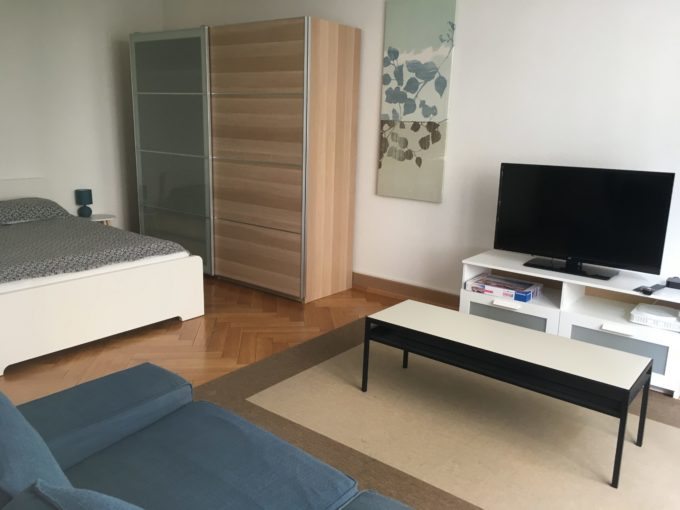 Charming studio close to Lausanne's city centre and train station (12)