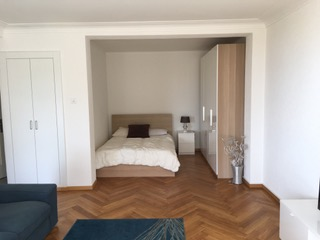 Bright studio with lake view close to Lausanne city centre and train station (53)