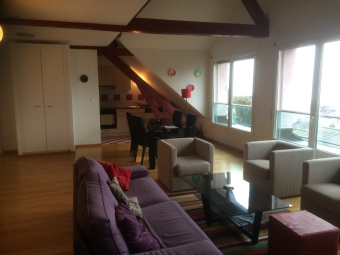 Furnished Loft  with Panoramic View Lausanne